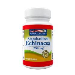 Echinacea Purpurea 250 mg x 100 Capsules